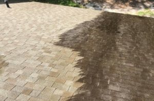 patio and paver cleaning
